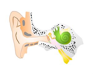 鼓膜チューブ挿入術
